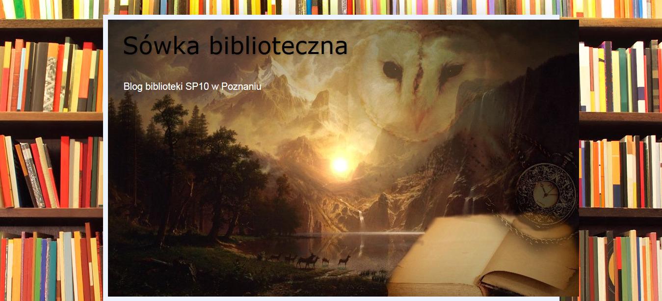 Plakat Sówka biblioteczna. W tle regały z książkami