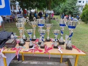 Puchary i pamiątkowe medale turniejowe.